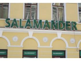 """Вывеска на фасад для обувного магазина """"Salamander"""""""