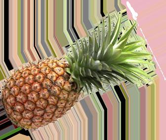 ананас1